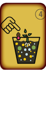Engrais Organique - BIOTABS - Starter Kit - Preparation Etape 4