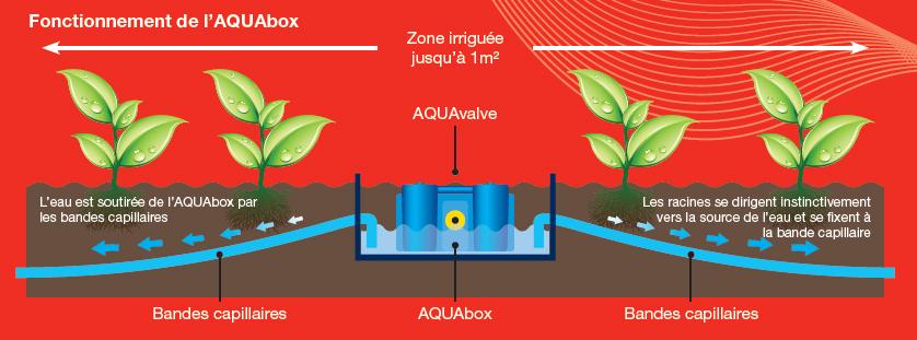 autopot - aquabox